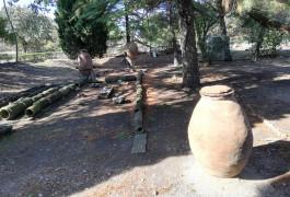 Troia Antik Kenti'nden Çıkarılan Tarihi Eserler
