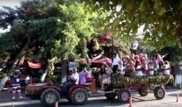 Bozcaada Bağbozumu Festivali İptal Edildi