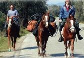 At Sırtında Devrialem