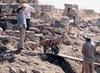 Troia'da Kazı Çalışmaları Sona Erdi