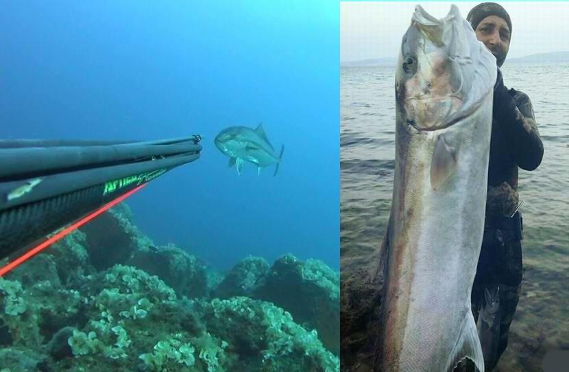 30 Kilogramlık Boyu Kadar Balığı İşte Böyle Yakaladı