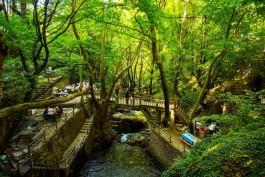 Çanakkale'de Ormanlara Giriş Yasaklandı